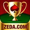 Texas Hold'em Poker Pro artwork