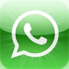 WhatsApp Messenger artwork